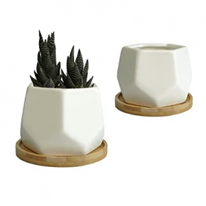 MOD POTTER - Succulent Pots now 15.0% off , Small Pots for Plants, Cactus and Flowers. Modern Geom..