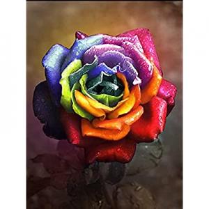 5D Diamond Painting Kits for Adults now 65.0% off , Full Drill Diamond Cross Stitch Arts Jewel Art..