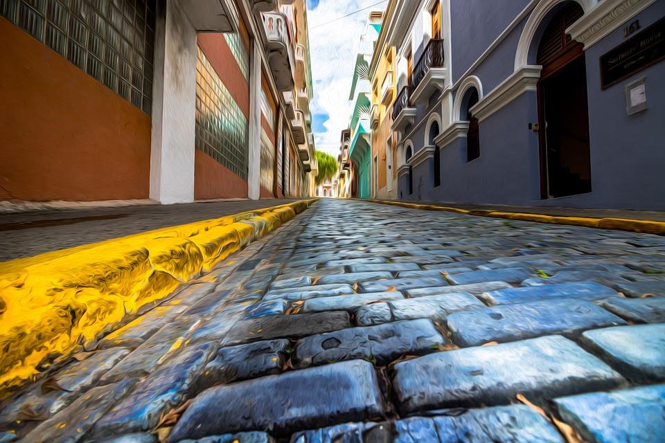5 Amazing Pet-Friendly Hotels in San Juan Islands - A Traveler's Guide